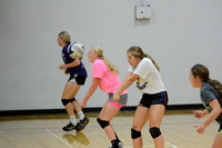 Wolfpack Volleyball practice Elgin Review 2015_3816