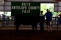 2015 Antelope County Fair - livestock premium auction