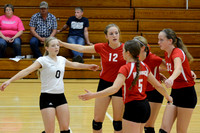 Wolfpack VB vs Central Valley Elgin Review 2015_7188