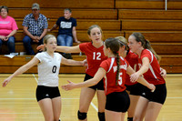 Wolfpack VB vs Central Valley Elgin Review 2015_7189
