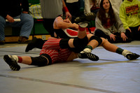 Wolfpack wrestling C-O Elgin Review 2017_20170202_ (2)