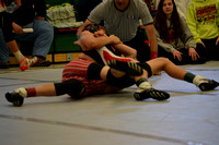 Wolfpack wrestling C-O Elgin Review 2017_20170202_ (3)