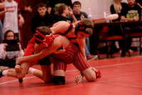 WolfpackWrestling Districts Elgin Review 20153215