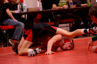 WolfpackWrestling Districts Elgin Review 20153228