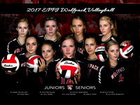 Wolfpack Volleyball Jr Sr 16x24 copy