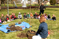 Arbor Day Young N Lively tree planting 2018 Elgin Review3726