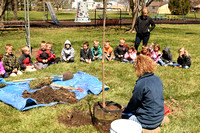 Arbor Day Young N Lively tree planting 2018 Elgin Review3729