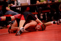 WolfpackWrestling Districts Elgin Review 20153229