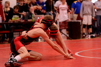 WolfpackWrestling Districts Elgin Review 20153212