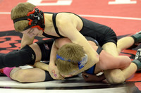 State Wrestling ElginReview2015_9990