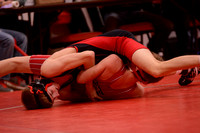 WolfpackWrestling Districts Elgin Review 20153225