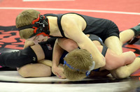 State Wrestling ElginReview2015_9992