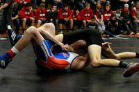 Wolfpack Wrestling at Districts Elgin Review 2018_7280