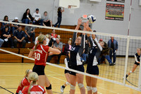 Wolfpack VB vs Central Valley Elgin Review 2015_7208