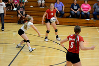 Wolfpack VB vs Central Valley Elgin Review 2015_7204