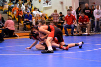 Wolfpack wrestling at Districts Day 2 Elgin Review 2017_8396