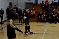 NVC VB Wolfpack vs Clearwater-Orchard 2014