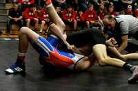 Wolfpack Wrestling at Districts Elgin Review 2018_7282